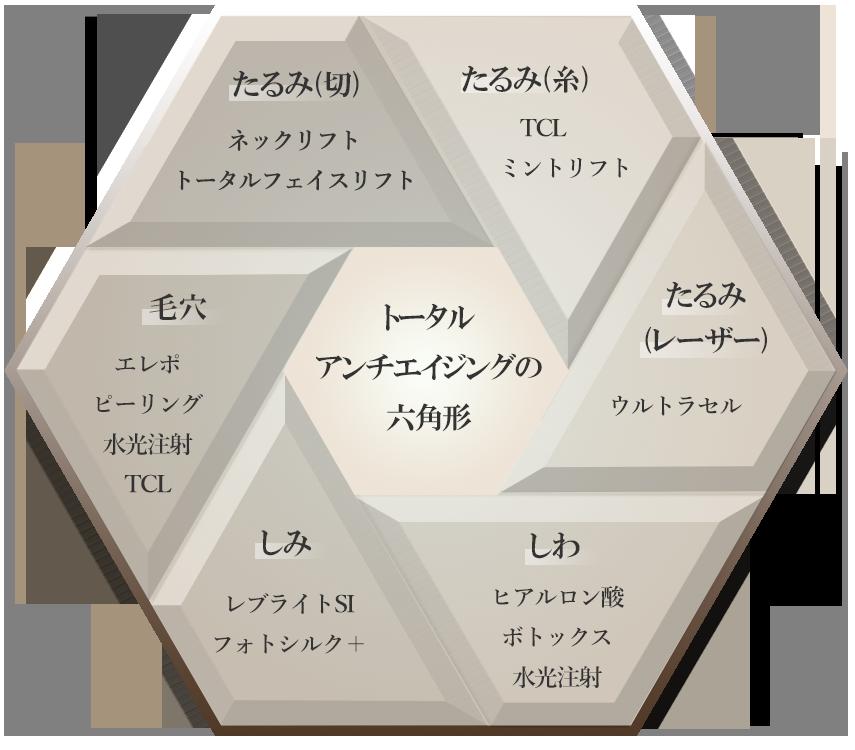 トータルアンチエイジングの6角形