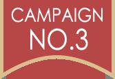 campaignNo.3